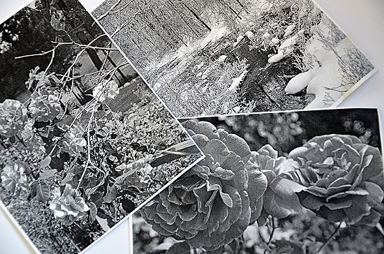9black white photo copy art journal